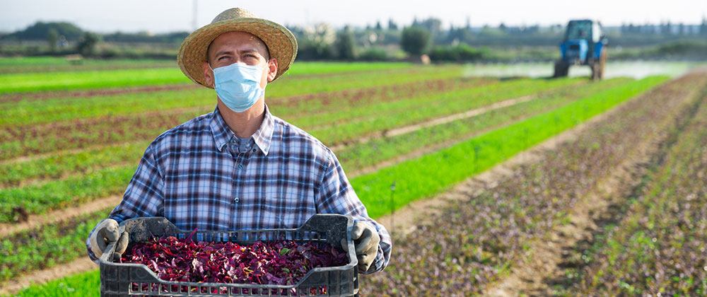 Farmworker Immigration